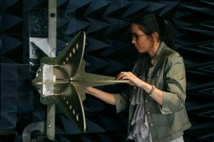Quad ridge horn anechoic chamber laboratory open boundary low frequency